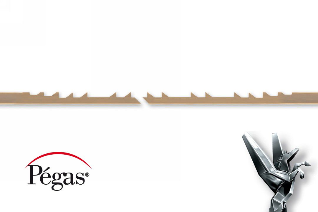 Pegas Double Reverse Skip Scroll Saw Blades for Wood